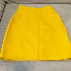 North Beach Leather Skirt